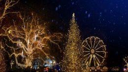 Meraki Christmas Festival